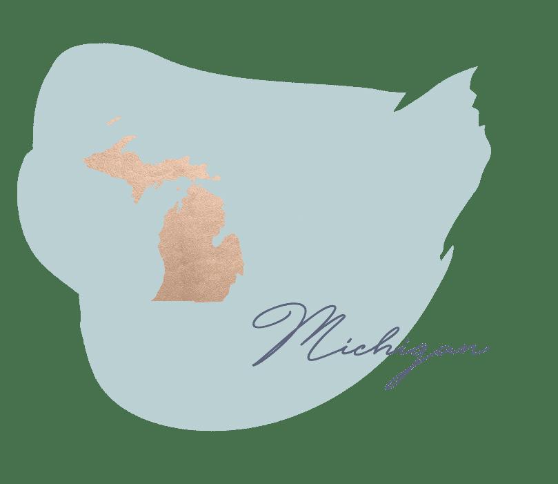 Michigan Certification Class Dermaplanepro